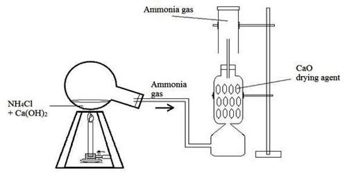 Lab preparation of Ammonia