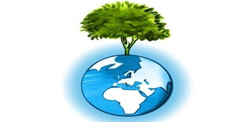 Role of Human beings in Conservation of Environment