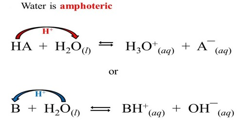 Amphoteric Nature of Water