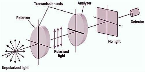 Polarizer and Analyzer