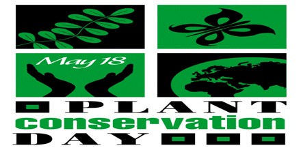 What do you mean by Plant Conservation? Discuss its Importance.
