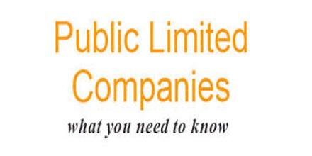 Define Public Company