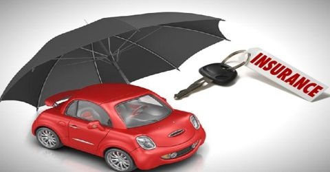 Motor Vehicle Insurance