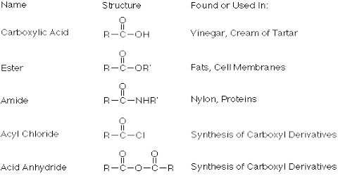 Uses of Different Acids and Their Derivatives