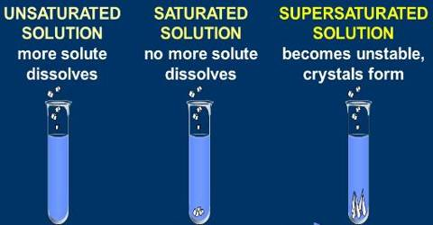 Experiment: Make Saturated and Unsaturated Solutions