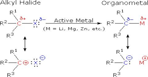 Reaction of Alkyl Halides with Metals