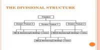 Divisional Structure: Definition in terms of Business Management