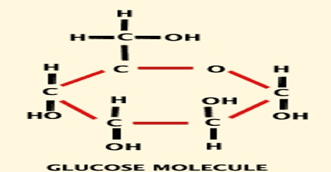 How Structure of Glucose Molecule can be Identify?