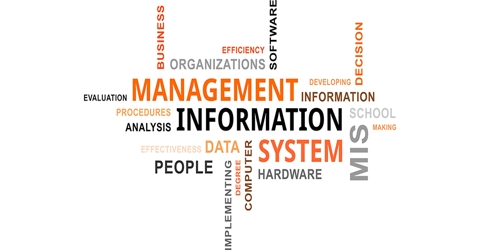 Managerial and Business Advantages of Management Information System