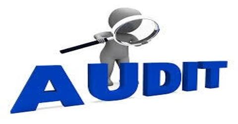 Advantages and Disadvantages of Management Audit