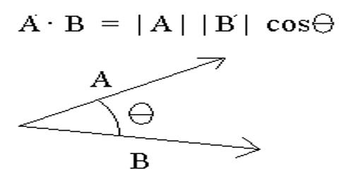 Vector Symbols: Major Types