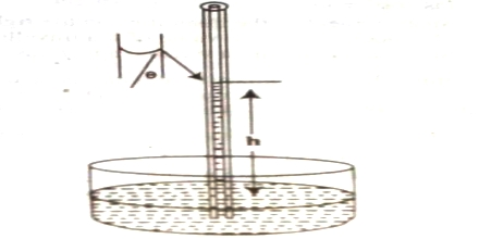 Measurement of Surface Tension in Capillary Rise Method