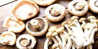 Mushroom as Food