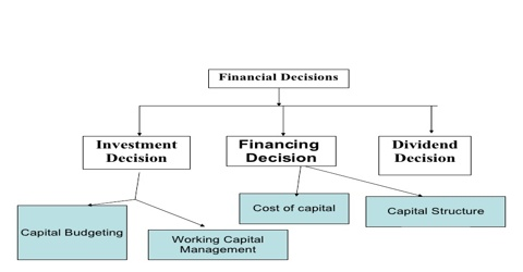 Investment Decision in Financial Management