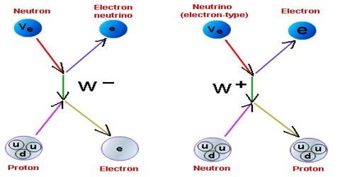 Weak Nuclear Force: Definition in Dynamics