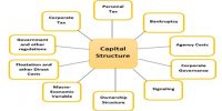 Financial Risk in Capital Structure