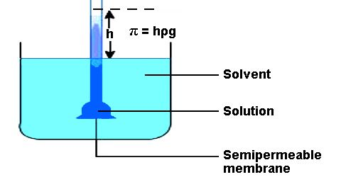 Determination of Osmotic Pressure by Berkeley and Hartley's Method