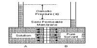 Semi-permeable Membrane: Vapour Pressure Theory