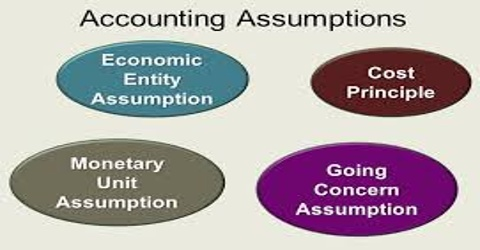 Accounting Entity Assumption