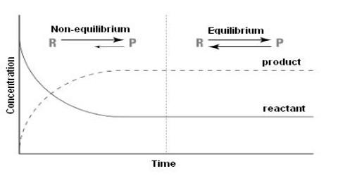 Criteria of Chemical Equilibrium