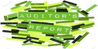 Meaning Auditor's Report