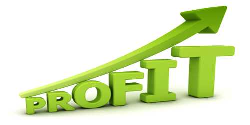 Dissimilarities between Capital Profit and Revenue Profit
