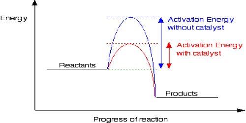 Catalyst: Definition and Description