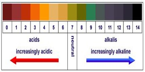 Determination of pH of a Solution
