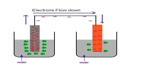 Metal-metal Ion Electrode in Half-Cells