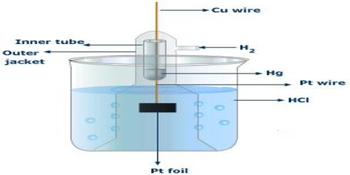 Gas Electrodes in Half-Cells