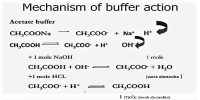 Mechanism of Buffer Action