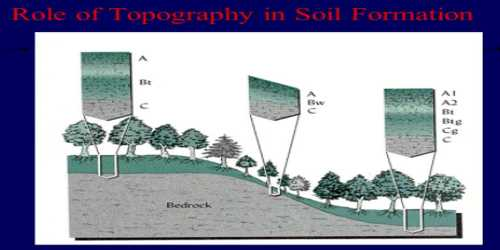 Topography: Soil Forming Factor