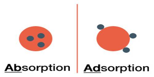 Absorption and Sorption