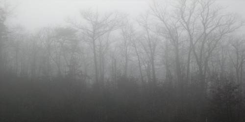 Fog and Mist in the Atmosphere