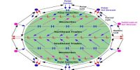 Pressure and Wind Direction