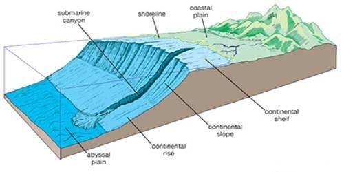 Minor Relief Features of Ocean Water