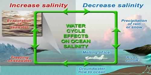 Salinity of Ocean Water
