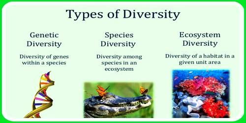 Genetic Diversity