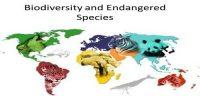 Endangered Species of Biodiversity