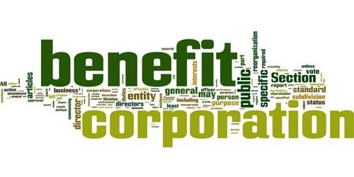 Advantages of Statutory Corporation