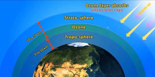 Ozone in the Earth's Atmosphere