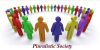 How various interest groups interacting in pluralistic society?