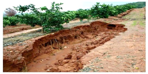 Soil Erosion in Indian Subcontinent