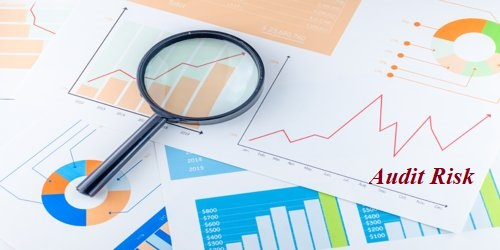 Components of Preliminary Audit Strategy