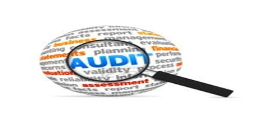 Distinguish between Internal Audit and Statutory Audit