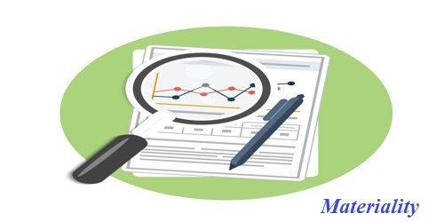 Determining the Materiality Level of the Financial Statements