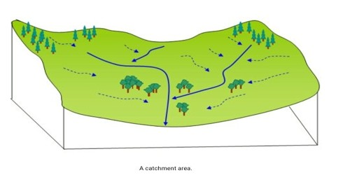 Catchment Area
