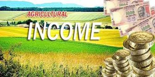 Agriculture Income: Characteristics and Elements