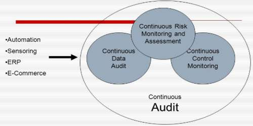 Continuous Audit