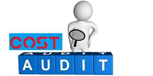 Criticisms of Cost Audit